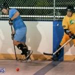 California Golden Seals vs Quebec Nordiques Bermuda Ball Hockey, January 21 2015-36