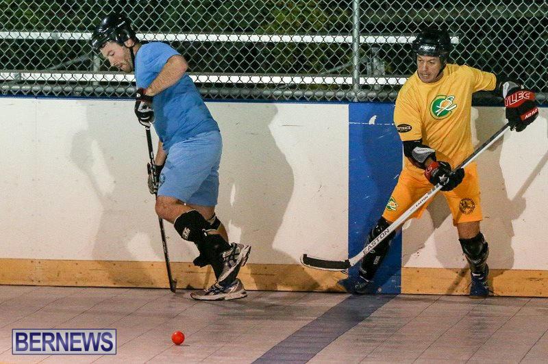 California-Golden-Seals-vs-Quebec-Nordiques-Bermuda-Ball-Hockey-January-21-2015-36