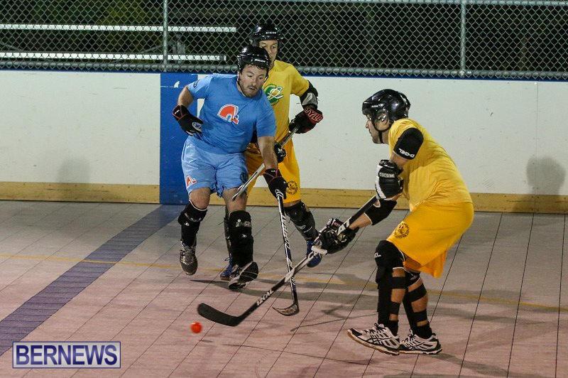 California-Golden-Seals-vs-Quebec-Nordiques-Bermuda-Ball-Hockey-January-21-2015-38