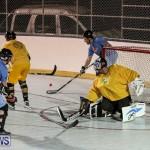 California Golden Seals vs Quebec Nordiques Bermuda Ball Hockey, January 21 2015-39
