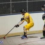 California Golden Seals vs Quebec Nordiques Bermuda Ball Hockey, January 21 2015-4