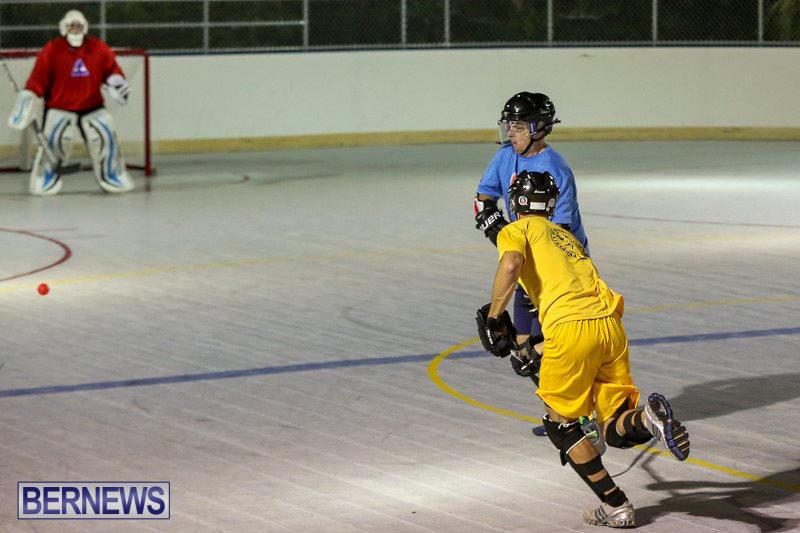 California-Golden-Seals-vs-Quebec-Nordiques-Bermuda-Ball-Hockey-January-21-2015-41