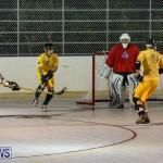 California Golden Seals vs Quebec Nordiques Bermuda Ball Hockey, January 21 2015-42