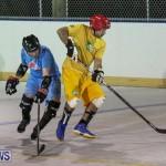 California Golden Seals vs Quebec Nordiques Bermuda Ball Hockey, January 21 2015-46