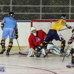 California Golden Seals vs Quebec Nordiques Bermuda Ball Hockey, January 21 2015-5