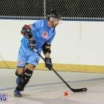 California Golden Seals vs Quebec Nordiques Bermuda Ball Hockey, January 21 2015-55