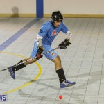California Golden Seals vs Quebec Nordiques Bermuda Ball Hockey, January 21 2015-56