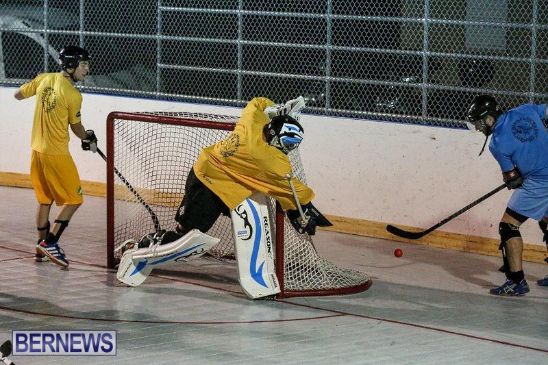 California-Golden-Seals-vs-Quebec-Nordiques-Bermuda-Ball-Hockey-January-21-2015-58