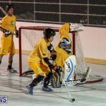 California Golden Seals vs Quebec Nordiques Bermuda Ball Hockey, January 21 2015-59