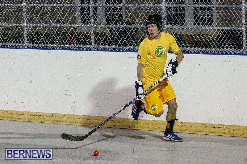 California-Golden-Seals-vs-Quebec-Nordiques-Bermuda-Ball-Hockey-January-21-2015-60