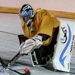 California Golden Seals vs Quebec Nordiques Bermuda Ball Hockey, January 21 2015-64