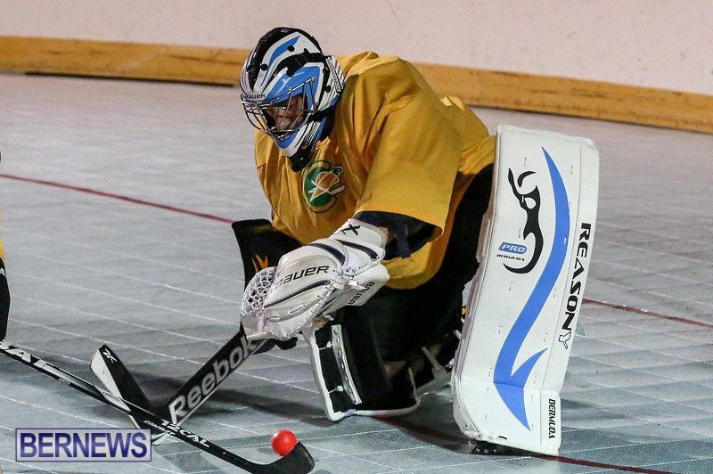 California-Golden-Seals-vs-Quebec-Nordiques-Bermuda-Ball-Hockey-January-21-2015-64