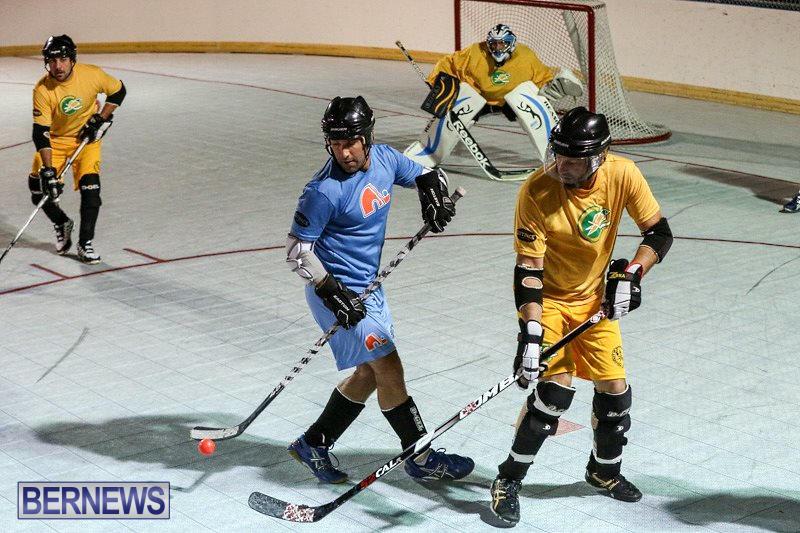 California-Golden-Seals-vs-Quebec-Nordiques-Bermuda-Ball-Hockey-January-21-2015-66