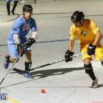 California Golden Seals vs Quebec Nordiques Bermuda Ball Hockey, January 21 2015-67