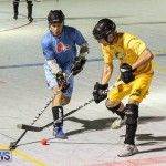 California Golden Seals vs Quebec Nordiques Bermuda Ball Hockey, January 21 2015-68