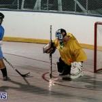 California Golden Seals vs Quebec Nordiques Bermuda Ball Hockey, January 21 2015-69