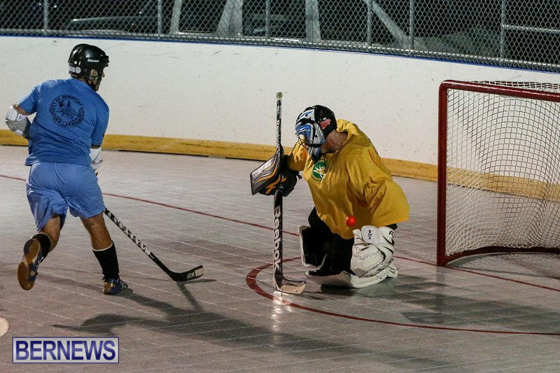 California-Golden-Seals-vs-Quebec-Nordiques-Bermuda-Ball-Hockey-January-21-2015-69