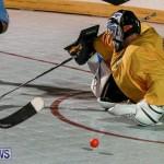 California Golden Seals vs Quebec Nordiques Bermuda Ball Hockey, January 21 2015-70