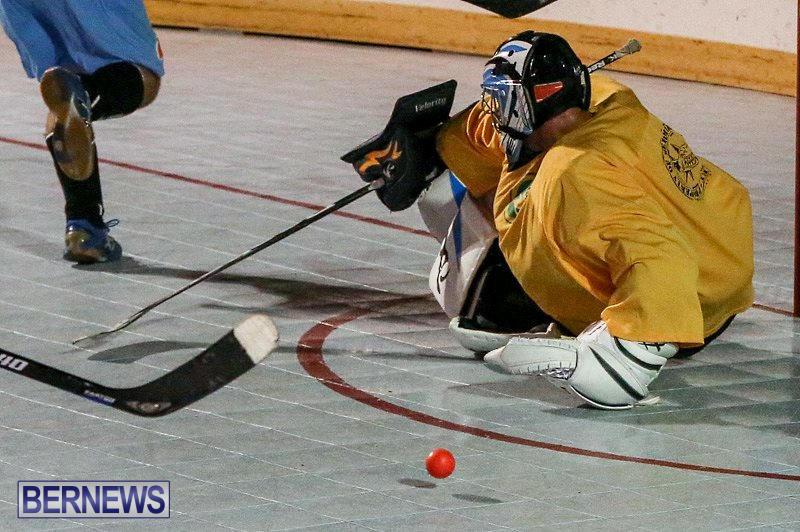 California-Golden-Seals-vs-Quebec-Nordiques-Bermuda-Ball-Hockey-January-21-2015-70