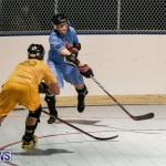 California Golden Seals vs Quebec Nordiques Bermuda Ball Hockey, January 21 2015-72