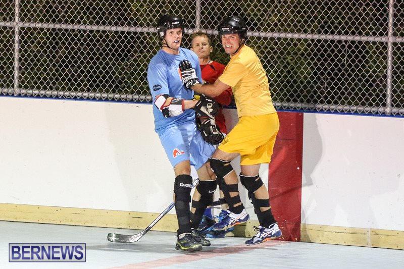 California-Golden-Seals-vs-Quebec-Nordiques-Bermuda-Ball-Hockey-January-21-2015-73