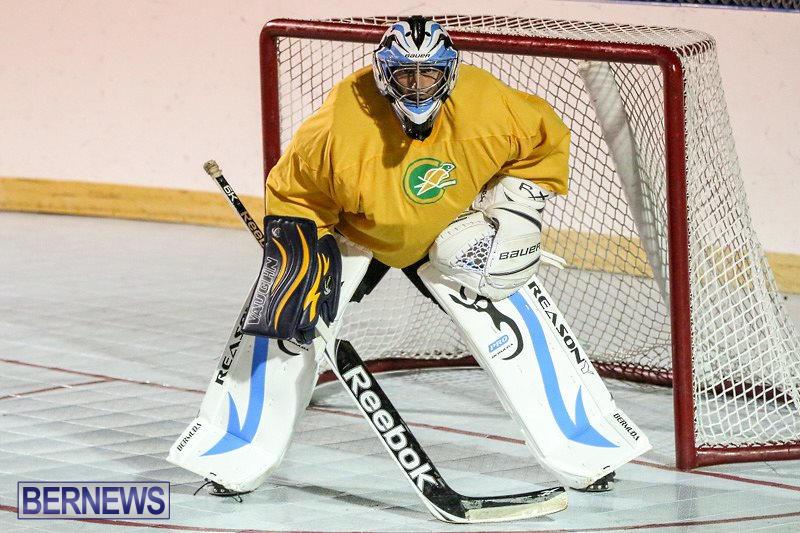 California-Golden-Seals-vs-Quebec-Nordiques-Bermuda-Ball-Hockey-January-21-2015-74