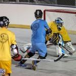 California Golden Seals vs Quebec Nordiques Bermuda Ball Hockey, January 21 2015-76