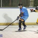 California Golden Seals vs Quebec Nordiques Bermuda Ball Hockey, January 21 2015-77