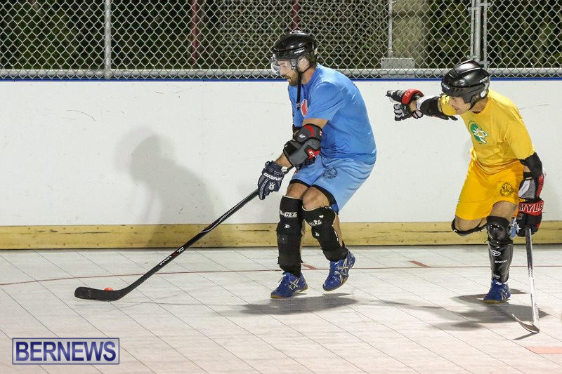 California-Golden-Seals-vs-Quebec-Nordiques-Bermuda-Ball-Hockey-January-21-2015-77