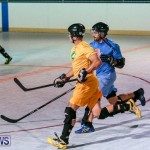 California Golden Seals vs Quebec Nordiques Bermuda Ball Hockey, January 21 2015-78