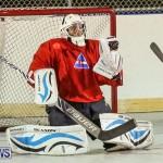 California Golden Seals vs Quebec Nordiques Bermuda Ball Hockey, January 21 2015-8