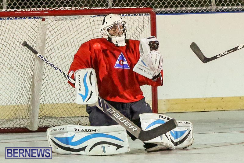 California-Golden-Seals-vs-Quebec-Nordiques-Bermuda-Ball-Hockey-January-21-2015-8
