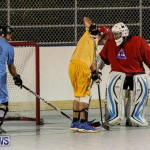California Golden Seals vs Quebec Nordiques Bermuda Ball Hockey, January 21 2015-81