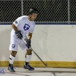 Colorado Rockies vs Toronto Arenas Bermuda Ball Hockey, January 21 2015-1