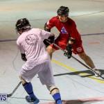 Colorado Rockies vs Toronto Arenas Bermuda Ball Hockey, January 21 2015-12