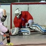 Colorado Rockies vs Toronto Arenas Bermuda Ball Hockey, January 21 2015-13