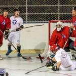 Colorado Rockies vs Toronto Arenas Bermuda Ball Hockey, January 21 2015-14