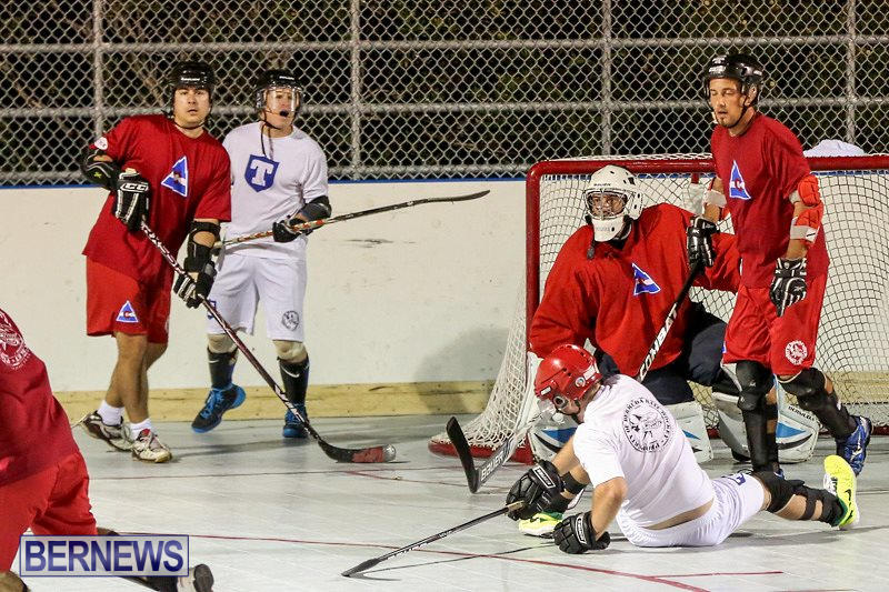 Colorado-Rockies-vs-Toronto-Arenas-Bermuda-Ball-Hockey-January-21-2015-14