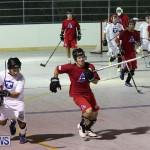 Colorado Rockies vs Toronto Arenas Bermuda Ball Hockey, January 21 2015-17