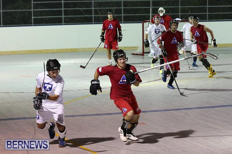 Colorado-Rockies-vs-Toronto-Arenas-Bermuda-Ball-Hockey-January-21-2015-17
