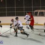Colorado Rockies vs Toronto Arenas Bermuda Ball Hockey, January 21 2015-2