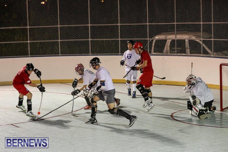 Colorado-Rockies-vs-Toronto-Arenas-Bermuda-Ball-Hockey-January-21-2015-2