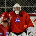 Colorado Rockies vs Toronto Arenas Bermuda Ball Hockey, January 21 2015-22