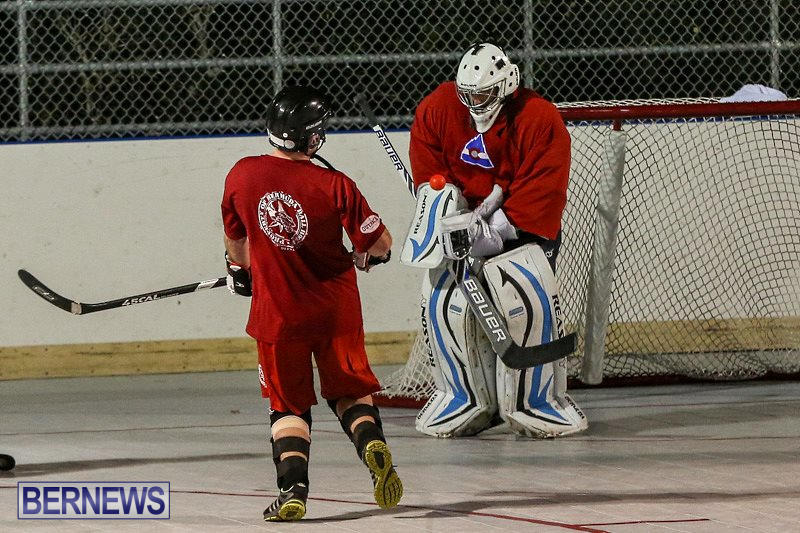 Colorado-Rockies-vs-Toronto-Arenas-Bermuda-Ball-Hockey-January-21-2015-24