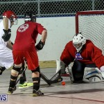 Colorado Rockies vs Toronto Arenas Bermuda Ball Hockey, January 21 2015-25