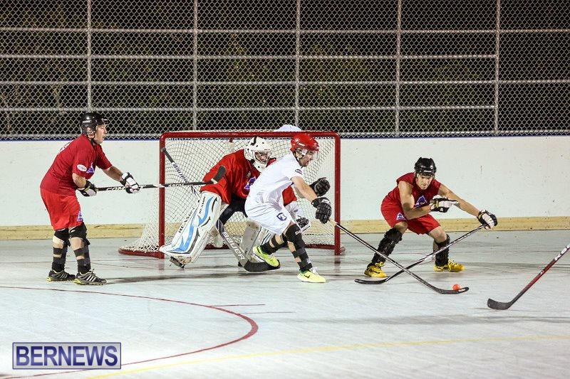 Colorado-Rockies-vs-Toronto-Arenas-Bermuda-Ball-Hockey-January-21-2015-26