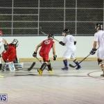 Colorado Rockies vs Toronto Arenas Bermuda Ball Hockey, January 21 2015-28