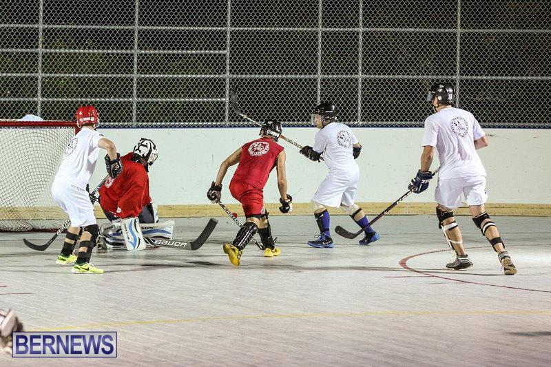Colorado-Rockies-vs-Toronto-Arenas-Bermuda-Ball-Hockey-January-21-2015-28