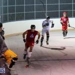 Colorado Rockies vs Toronto Arenas Bermuda Ball Hockey, January 21 2015-29