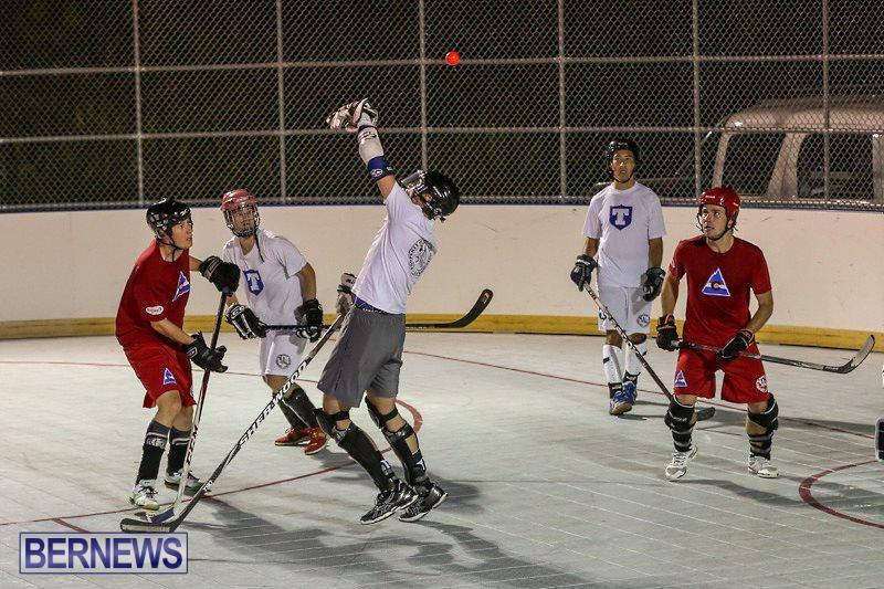 Colorado-Rockies-vs-Toronto-Arenas-Bermuda-Ball-Hockey-January-21-2015-3